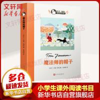 魔法师的帽子 童书图书 外国儿童文学 7-10岁 11-14岁 中小学生课外阅读书籍 儿童文学小说 老师推荐阅读暑假寒假