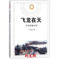 【二手旧书9成新正版】飞龙在天王天玺红旗9787505138421