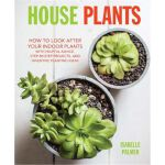 House Plants: How to look after your indoor plants: with he