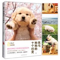 我与狗狗的十个约定(2015新版)