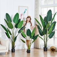 北欧旅人蕉植物假天堂鸟仿真盆栽绿植室内树摆件装饰花盆景大