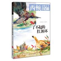 西顿动物故事小百科《了不起的红颈环》(适用5-10岁儿童阅读,经典感人的绘本,辅佐动植物小百科,搭配生动有趣的游戏,畅