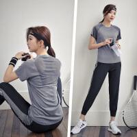 瑜伽服套装女网红性感健身房运动休闲套装春夏晨跑步服速干衣