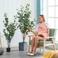 尤加利大型北欧仿真植物树装饰盆景室内盆栽家居客厅大摆件