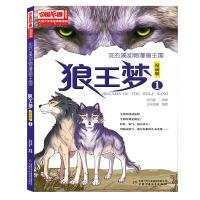 儿童文学名家典藏漫画・沈石溪动物漫画王国――狼王梦1・漫画版
