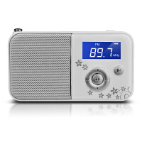 熊猫/PANDA DS-111 数码音响播放器 插卡音箱 立体声收音机 白色