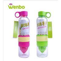 文博 玻璃杯柠檬杯 多功能果蔬手动榨汁杯魔力水杯活力瓶 两色随机