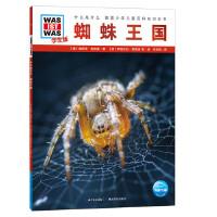 什么是什么.学生版(第1辑):蜘蛛王国(平)
