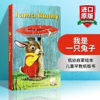 I am a Bunny 我是一只兔子 英文原版绘本 Little Golden Book 金色童书系列 Richar