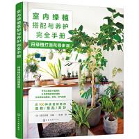 室内绿植搭配与养护完全手册:用绿植打造花园家居