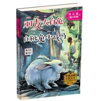 中西动物小说大王纪念典藏书系:朋友大白兔・白靴兔小战马