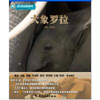 《大象罗拉》(随书赠《大象罗拉》DVD光盘及消失的家园系列明信片8张)