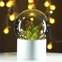 玻璃水晶球 小夜灯教师创意礼品八音盒摆件生日礼物送女友老婆 开花仙人掌