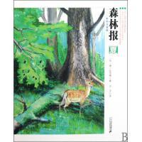 森林报(夏彩色注音版)儿童少儿科普读物 假期读本 科学科普知识