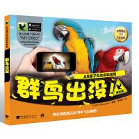 AR亲子互动百科系列:群鸟出没!