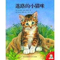 迷路的小猫咪/爱的味道图画书
