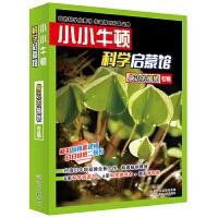 小小牛顿科学启蒙馆:身边的植物(共12册)