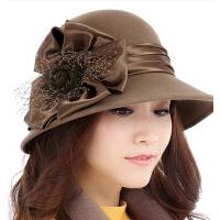 优雅礼帽冬季帽子韩版时尚英伦 女秋冬天帽子羊毛定型毡帽