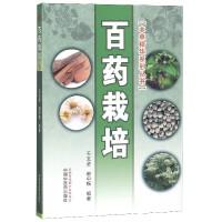 百药栽培/本草精华系列丛书