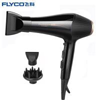 飞科(FLYCO)电吹风机FH6101 吹风机 大功率 吹风筒 发廊家用负离子冷热风 理发店电吹风机