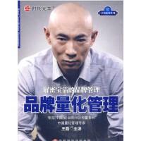 解密宝洁的品牌管理 品牌量化管理 王磊6DVD正版