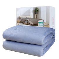 彩虹电热毯双人电褥子双人智能wifi手机无线控制保暖加厚除螨电热毯1888v(长1.8*宽1.5m)