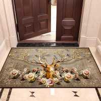 【满减优惠】进门地垫家用入户大门口地毯防滑垫子厨房吸水脚垫门垫定制可裁剪