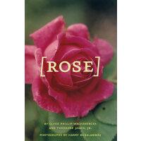 玫瑰(附52幅照片)Rose