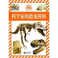 科学家的恐龙拼图