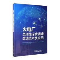 火电厂灵活性深度调峰改造技术及应用 中国电力出版社