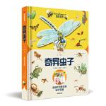 【BF】奇异虫子-纸上景观