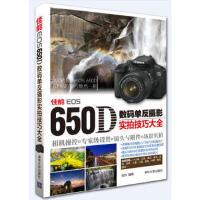 佳能EOS 650D数码单反摄影实拍技巧大全:相机操控+专家级设置+镜头与附件+场景实拍