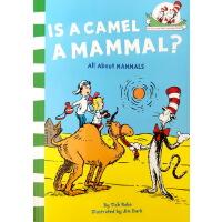 英文原版 Is a Camel a Mammal? 骆驼是哺乳动物吗 戴帽子的猫科普绘本 哺乳动物大观