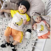 男女宝宝夏季短袖T恤3-6个月纯棉女童打底衫0-1-2岁婴儿T恤薄款