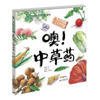 家门外的自然课系列――噢!中草药(百班千人暑期共读图书)