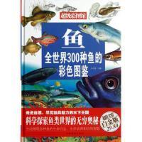 鱼(全世界300种鱼的彩色图鉴超值全彩白金版)(精)/超级彩