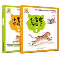 学校推荐 小老虎历险记 注音美绘版 上下全2册 汤素兰系列儿童书 手绘全彩一年级 6-8-12岁一二年级小学生课外读物
