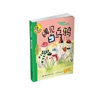 小人鱼童书馆(名家拼音美绘版)――遇见白乌鸦
