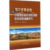 鄂尔多斯盆地中部地区延长组低渗透致密岩性油藏评价 9787518306848