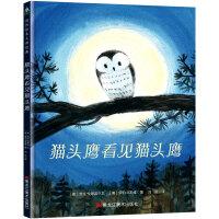 猫头鹰看见猫头鹰(精装) 森林鱼童书