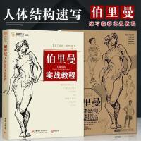 共2册伯里曼人体结构实战教程 速写描摹本跟伯里曼学人体结构锦唐艺术人体素描基础人物速写线描素描技法绘画