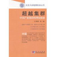 超越集群――中国产业集群的理论探索
