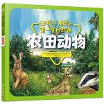 让孩子着迷的第一堂自然课――农田动物