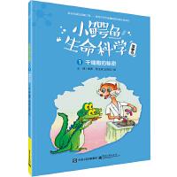 小鳄鱼生命科学故事书(1-3册)(全彩)
