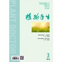 植物医生(原:植物医生 科普惠农)(2019年-第3期)10071067