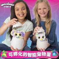 哈驰魔法蛋(HATCHIMALS)新款神秘蛋新品可孵化智能宠物蛋奇趣蛋儿童玩具女孩子神秘魔法蛋