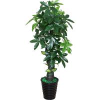 绿植仿真植物树假发财树盆栽招财树落地盆景室内花装饰摆件大型树