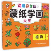 植物天才豆儿童蒙纸学画大全 孙平 9787542766380