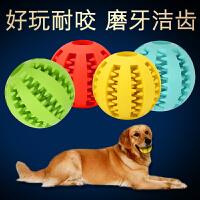 【支持礼品卡】宠物玩具狗狗玩具橡胶球大狗耐咬玩具狗咬球泰迪金毛玩具磨牙玩具t5a