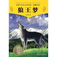 动物小说大王沈石溪・品藏书系:狼王梦